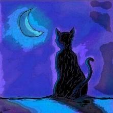 Kat in Maanlicht